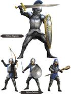 Hyrule Warriors Allied Units Hyrulean Soldiers (Render)