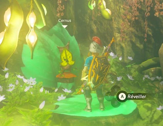 Cernus Zeldawiki Fandom