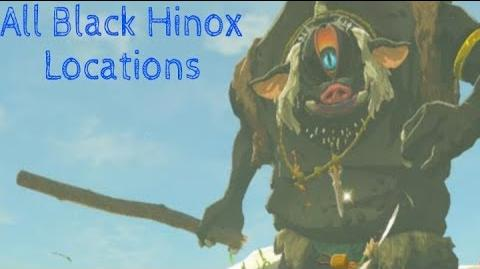 The Legend of Zelda- Breath of the Wild- All Black Hinox Locations