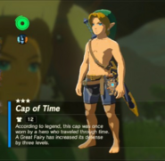 Breath of the Wild Hero's Clothes (Ocarina of Time) Cap of Time (Inventory)