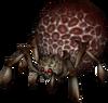 Armogohma's Eye