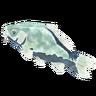 Breath of the Wild Frozen Fish Frozen Carp (Icon)