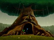 Link Enters the Great Deku Tree