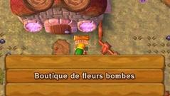 Boutique de Fleur Bombes ALBW.png