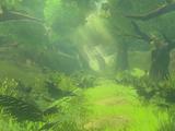 Korok Forest