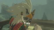 Orni Teba