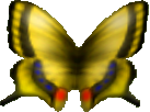 Butterfly (Ocarina of Time/Majora's Mask)