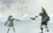 Link vs. Hero's Shade