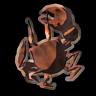 Blackened Crab