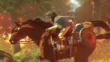 Epona Zelda Wii U