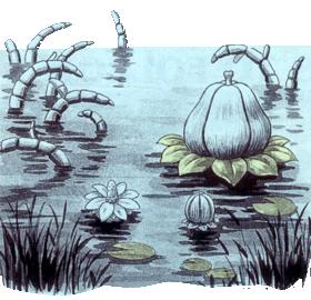 Flor Goponga