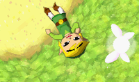 Link si risveglia trovando Sciela.