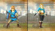 Link y Zelda HWDE
