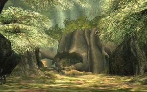 Phirone Wälder TP.jpg
