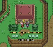 Link y su tio