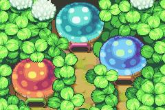 Comunidad Minish del bosque