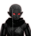 Hyrule Warriors Impa Dark Impa (Dialog Box Portrait)