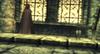 Zelda camouflée TP