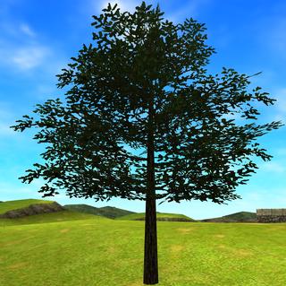 OoT3D Tree Model.png