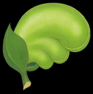 FS Pegasus Seed Artwork.png