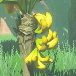 BotW Hyrule Compendium Mighty Bananas.png