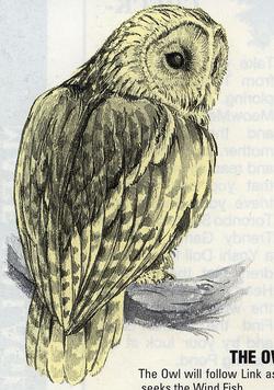 LA Owl Artwork 2.png