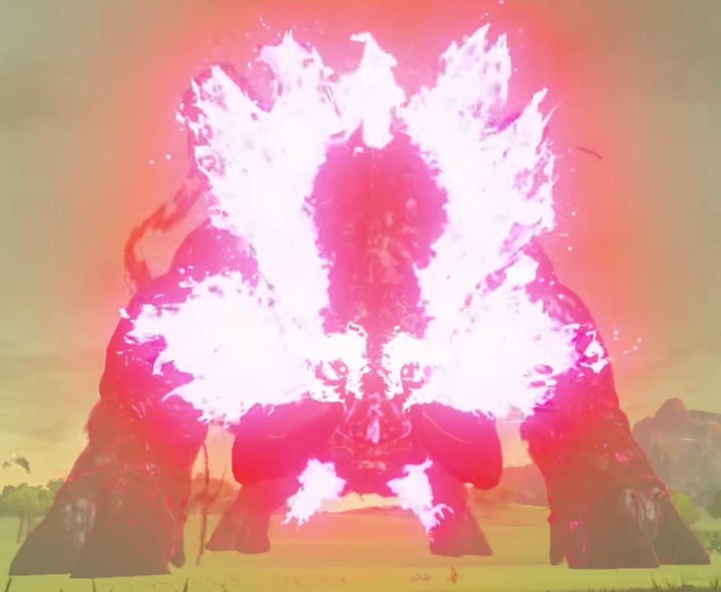 Breath Of The Wild Dark Link >> Ganon - Zelda Wiki