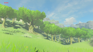 BotW Ginner Woods.png