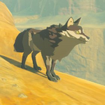 BotW Hyrule Compendium Wasteland Coyote.png