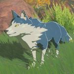 BotW Hyrule Compendium Maraudo Wolf.png