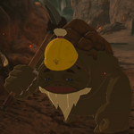 BotW Bohrin Model.png