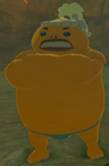 BotW Heehl Model.png