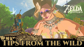 BotW Tips from the Wild Banner 14.png