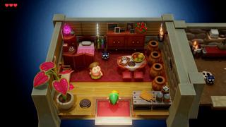 LANS Madam MeowMeow's House Interior.png