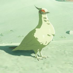 BotW Hyrule Compendium White Pigeon.png