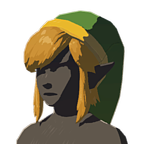 BotW Cap of the Hero Icon.png