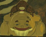 BotW Tray Model.png