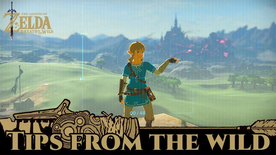 BotW Tips from the Wild Banner 11.png