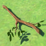 BotW Hyrule Compendium Tree Branch.png