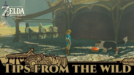 BotW Tips from the Wild Banner 02.png