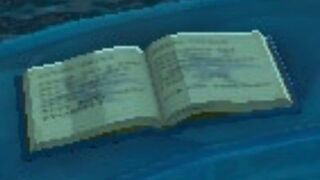 Mipha's Diary.jpg