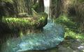 Sacred Grove.jpg
