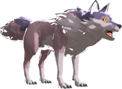 BotW Cold-Footed Wolf Model.png