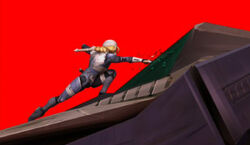 Sheik and the fallen Arwing.jpg