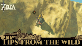 BotW Tips from the Wild Banner 07.png