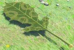 BotW Korok Leaf Model.png