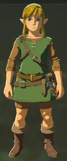 BotW Link Wearing Hero of the Wild Set 2.jpg
