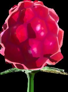 BotW Wildberry Model.png