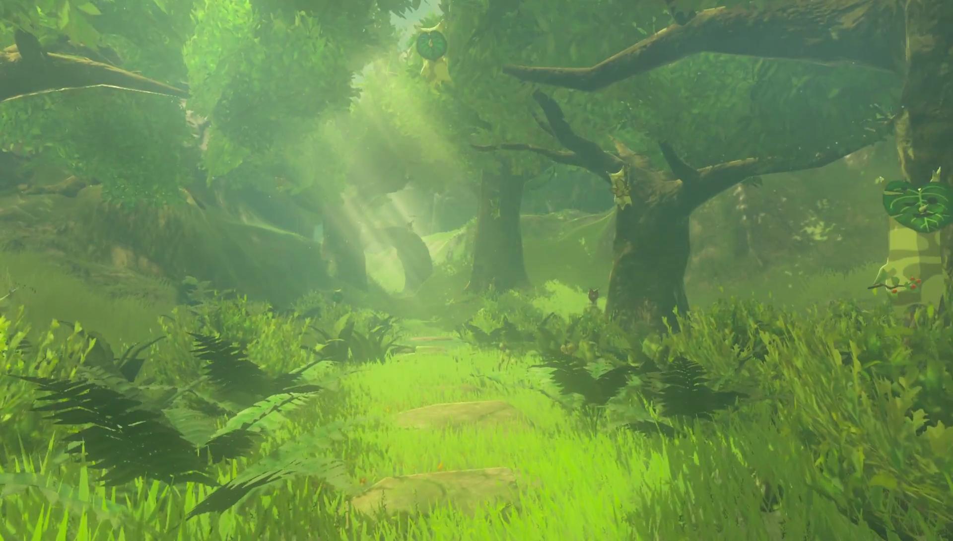 Korok Forest Zelda Wiki
