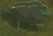 BotW Mountain Crow Model.png